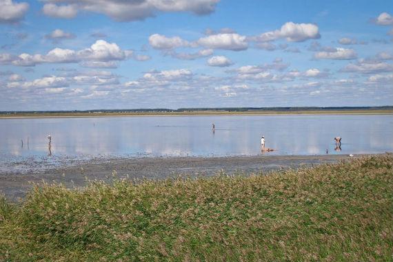 озеро Медвежье в Курганской области
