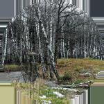 napoleonovskie-kurgany-v-peredelkino 5