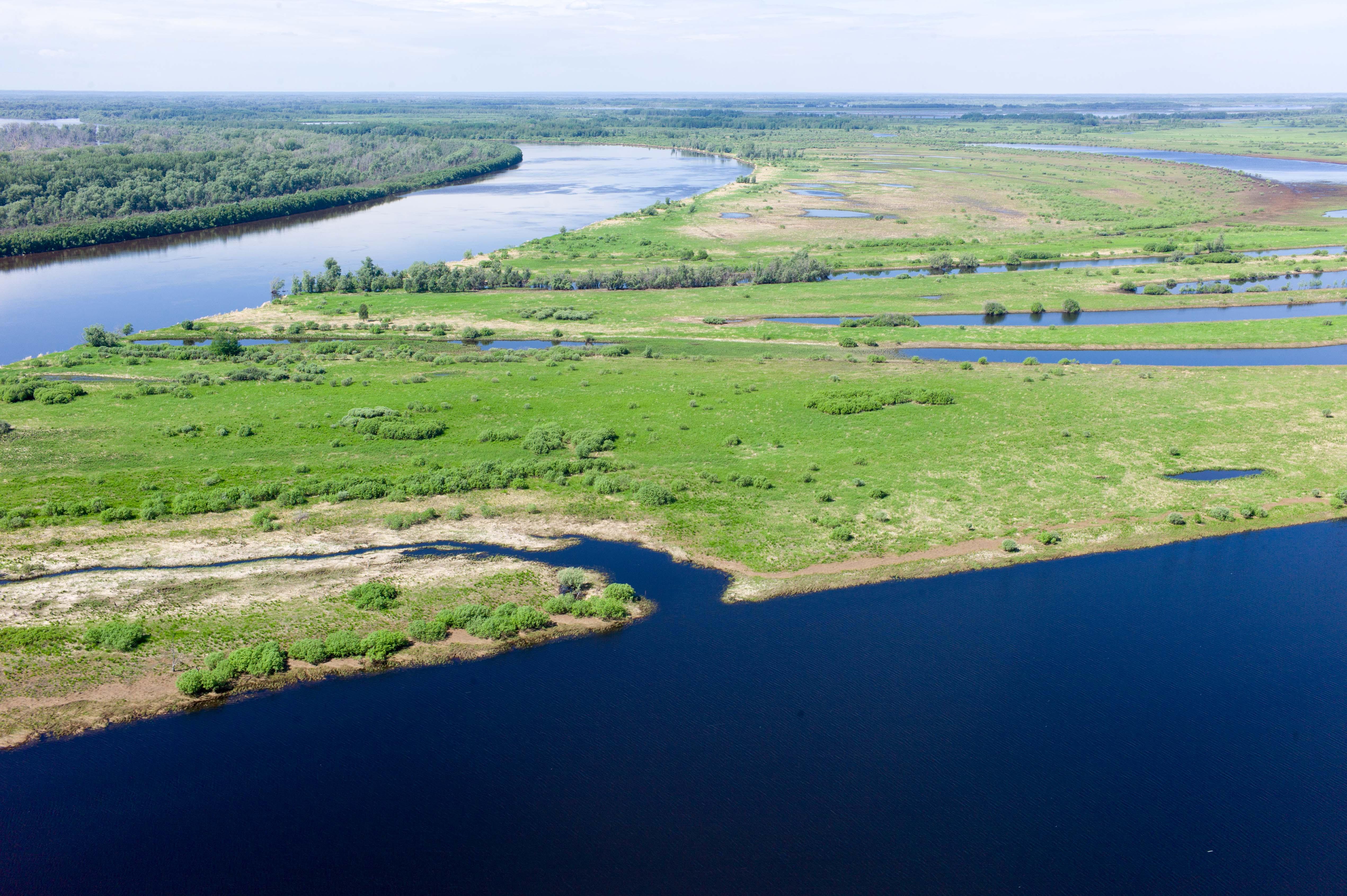 самая большая река в россии по площади